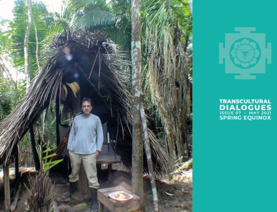 Transcultural Dialogues N°7 - ANSFORMATIONS OF SHAMANISM