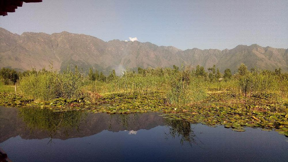 Mountains around Dal Lake